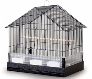 pet bird care cage